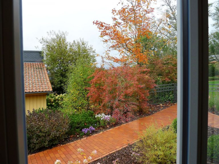 Wohnraum EG 8 Blick in den Garten